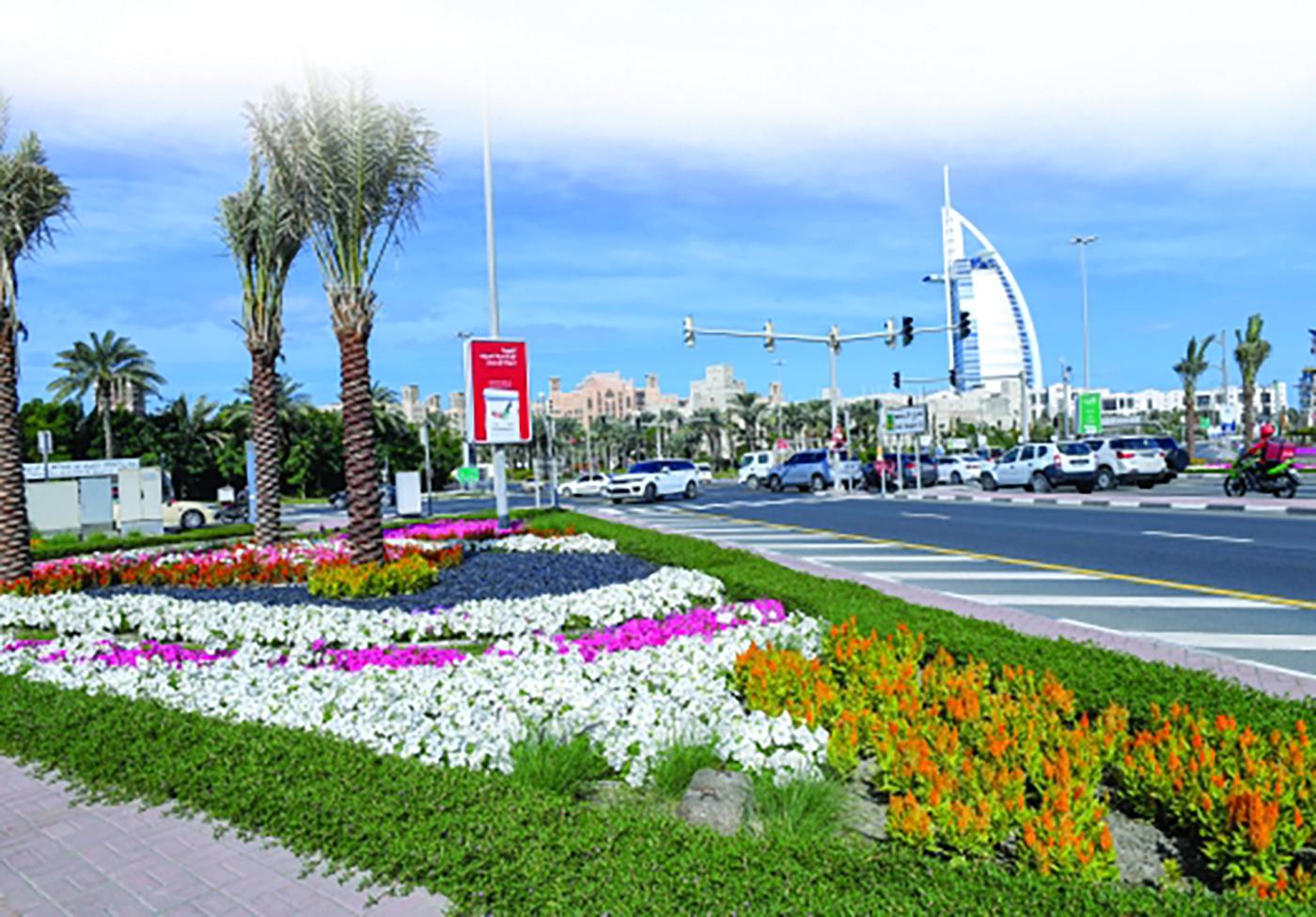3828 هكتاراً المساحات الخضراء في دبي