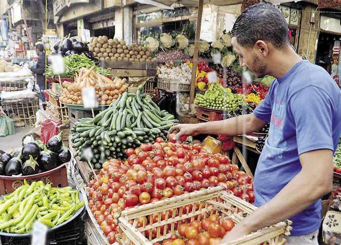 وزير الزراعة: أسعار الخضار والفواكه ضمن المعتاد