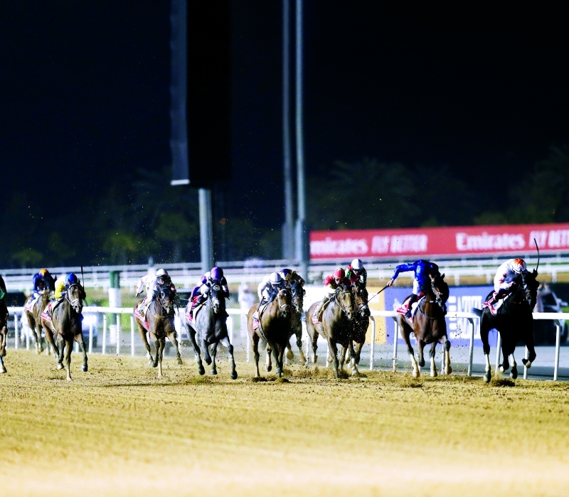 خيول العالم تستعد في «ميدان» لكأس دبي العالمي