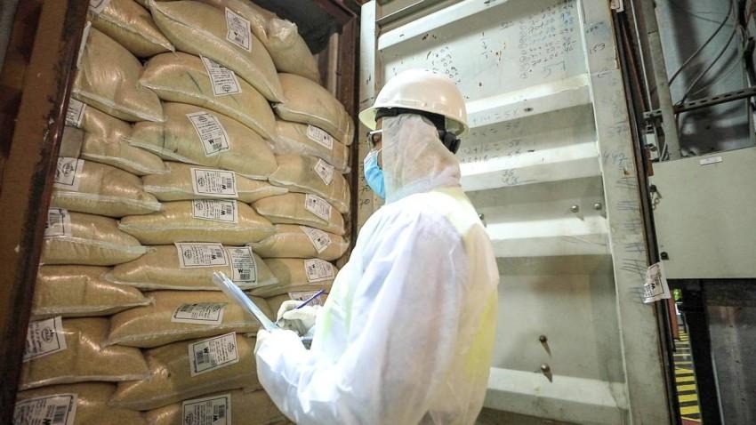 بلدية دبي تفتش على 2.6 مليون طن أغذية مستوردة في 4 أشهر
