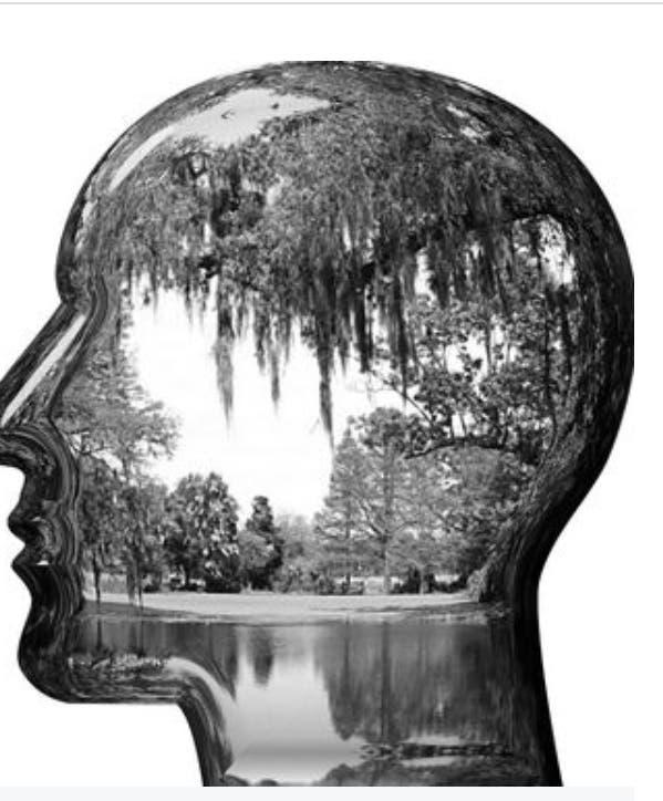 لعلاج الخرف والصرع.. تقنية تحول الأفكار لصور