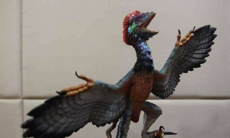 اكتشاف اصغر ديناصور في العالم حجمه بحجم الدجاجة وعمره 110 ملايين سنة